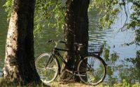 Cykeltur i Koebenhavn